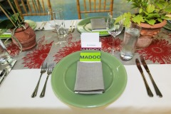 Kickoff lunch for Much Ado About Madoo 2013