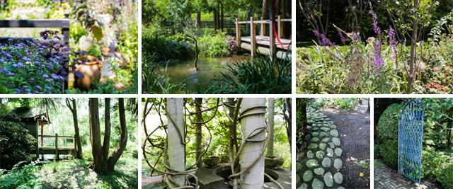 garden_filmstrip1